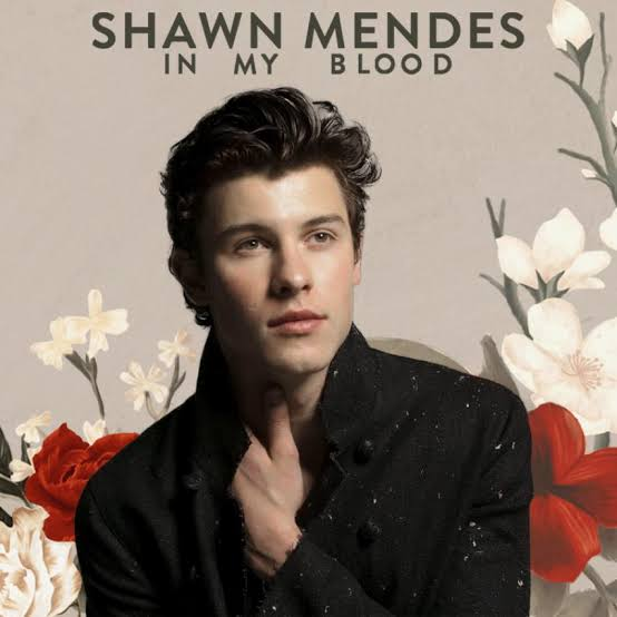 MP3: Shawn Mendes - In My Blood
